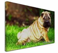 More details for shar-pei dog 'love you dad' x-large 30