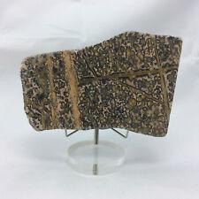 Leopard Skin Jasper Slab Specimen 180403 326g One Side Polished Metaphysical