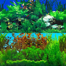 Aquarium Background Double-Sided Repeating Rocky Green Lush Plants Fish Tank