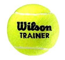 Wilson TRAINER x 60 palle da tennis