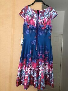 🤩BNWT ADRIANNA PAPELL Stretch 14 Cut Away Fit & Flare Printed Dress