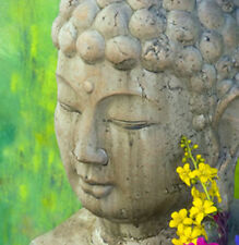 BUDDHA ( 2 ) GREETING CARD WITH C.D