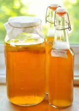 Organic Kombucha SCOBY 8 oz. FOR 1 GALLON JAR  PROBIOTIC Tea.
