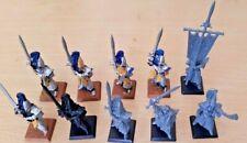 Warhammer elfos de la isla de sangre alta espada maestros de Hoeth x10 medio Pintado