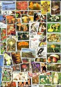 Guyana 600 Stamps Different Obliterated