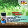 Herbal Aid Trikatu 500mg Extract 60 Vegetarian Capsules Herbal Supplement