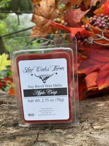 Handmade APPLE CRISP Soy Blend Wax Melts 2.75 Oz Candle Warmer Cube Tarts