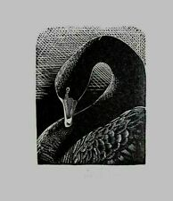 BLACK SWAN - An Original Signed Wood Etching / Woodcut Print By A. English