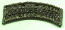 Vintage US Army JUNGLE EXPERT OD Green Subdued Tab Patch