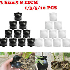 5/10PCS Plant Root Growing Box - FREE FAST SHIPPING