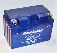 TruGel Battery YT12A-BS Suzuki GSXR750 GSX1300R Hayabusa SV650 AN400 GSF1250
