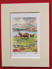 HIGHLAND CATTLE SCOTLAND CHARMING MOUNTED WATERCOLOUR PRINT 8X6 GRAY ONE OF MANY