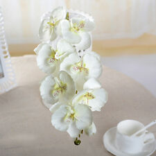 Wedding Colorful Artificial Fake Silk Flower Phalaenopsis Butterfly Orchid Decor