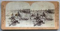 Africa Del Sud Forte Jameson Foto Stereo Analogica Vintage Verso 1900