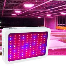 1000Watt Led Grow Light Full Spectrum for Hydropnic Greenhouse Growing Lamp