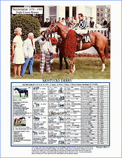 Horse Racing SECRETARIAT Triple Crown winner picture photo pedigree