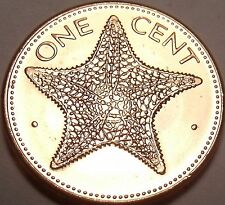 Gem Unc 1998 Bahamas 1 Cent~Starfish Coin~We Have Bahama Coins In Stock~Free Shi