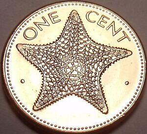 Gem UNC 1998 Bahamas 1 Cents ~ Mer Pièce de Monnaie ~ Nous Avoir Pièces En Stock