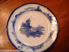 "Small Antique 7"" Royal Doulton Burslem  ""Norfolk"" Pattern Flow Blue Salad Plate"