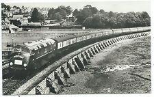 "RAILWAY - DIESEL D800 on ""CORNISH RIVIERA"" nr TEIGNMOUTH Real Photo Postcard"