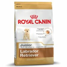 Labrador Junior Royal Canin KG.12