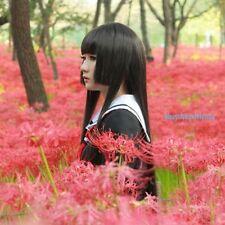Jigoku Shoujo/Hell Girl Enma Ai Long Straight Black Cosplay Wig+ wig cap