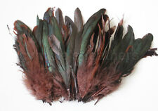 """100+ pcs.(16grams) 6-8"""" half bronze brown schlappen coque rooster feathers, NEW"""