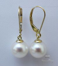HS Round 10mm South Sea Cultured Pearl Hoop Earrings 14K Yellow Gold AAA Grading