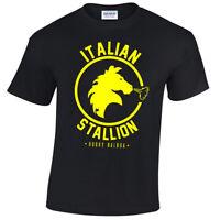 Italien Étalon Hommes T Shirt Rocky Balboa Boxe Gym Entraînement Top Déguisement