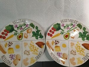 TWO×Portion control plates Slimming Weight Loss World Carbs Protein Veg Diet