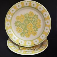 "Set of 2 VTG 10 3/4"" Dinner Plates Franciscan PICNIC Green & Yellow Flowers USA"