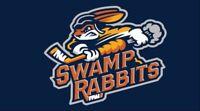Greenville Swamp Rabbits Logo Flag ECHL Hockey League 2018 Banner 3X5 ft
