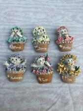 Dreamsicle Magnets with Names of Flowers