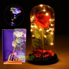 Rose Flower In Glass LED Night Light Valentine's Day Xmas Decoration Light Gift