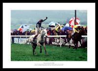 Desert Orchid 1989 Cheltenham Gold Cup Horse Racing Photo Memorabilia (0SP)