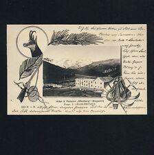 Switzerland Hotel Oven Mountain Engadine Graubünden/Hunting Gams Gun Rifle * AK UM 1900