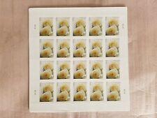 USPS Forever Stamps Wedding Rose Sheet of 20