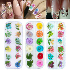 12 Colors 3D Real Dry Flowers Nail Art Decoration Design Manicure Nail Supplies