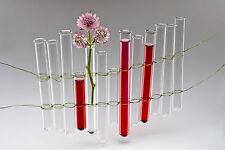 "SANDRA RICH, 6 x Reagenzglas ""TEST TUPES H18cm/1,7cm "" Art.: 3R (6 STÜCK)"
