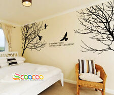 Wall Decor Decal Sticker Mural Removable Winter branches birds tree DC02882