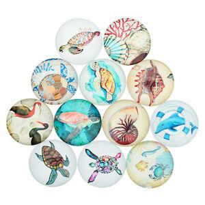 20pcs Mixed Fish Turtle Shell Glass Flatback Cabs DIY Decor Embellishment Crafts
