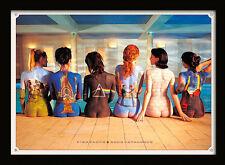 Pink Floyd Back Catalogue - Framed 30 x 40 Official Print