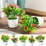 ARTIFICIAL FAKE LOTUS FLOWER POTTED PLANT BONSAI PARTY GARDEN HOME DECOR ~