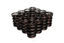 Engine Valve Spring-GAS, CARB Comp Cams 995-16