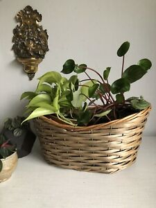 Vintage Hand Woven Wicker & Wire Storage Planter Basket Interior Decor Prop