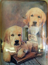 YELLOW LAB WOLVES AMMO Metal light switch plate cover w/matching screws USA A12