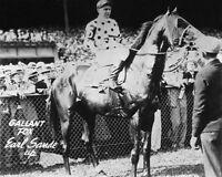 1930 Triple Crown Racehorse GALLANT FOX Glossy 8x10 Photo Horse Print Earl Sande