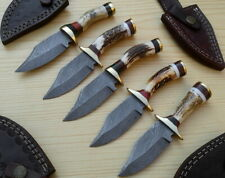 """Lot of 5 Custom Made Damascus TopSteel 6"""" Hunting Knives Stag Horn Brass Guards"""