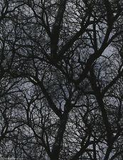 REST Patchworkstoff Dark Tree Gothic Stoffe Halloween Patchwork Bäume Baumwolle