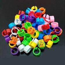 10 BAGUES plastique ouverte 8mm pour pigeons à clipper couleur au choix numéroté